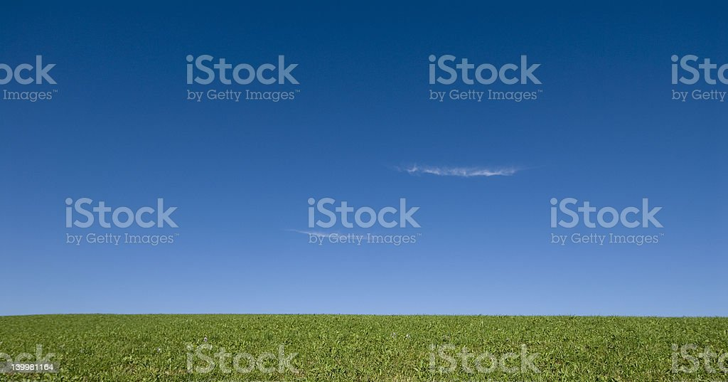 Open meadow 2 royalty-free stock photo