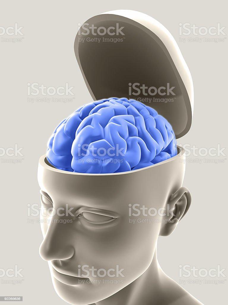Open Mind stock photo