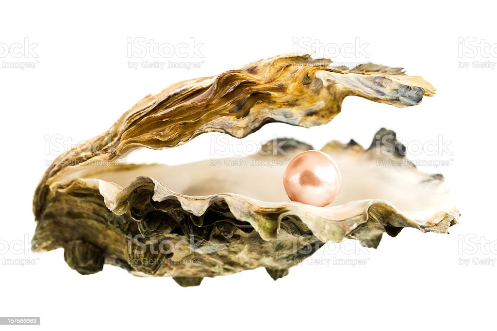 Open oyster shell with a large, pink pearl inside stock photo