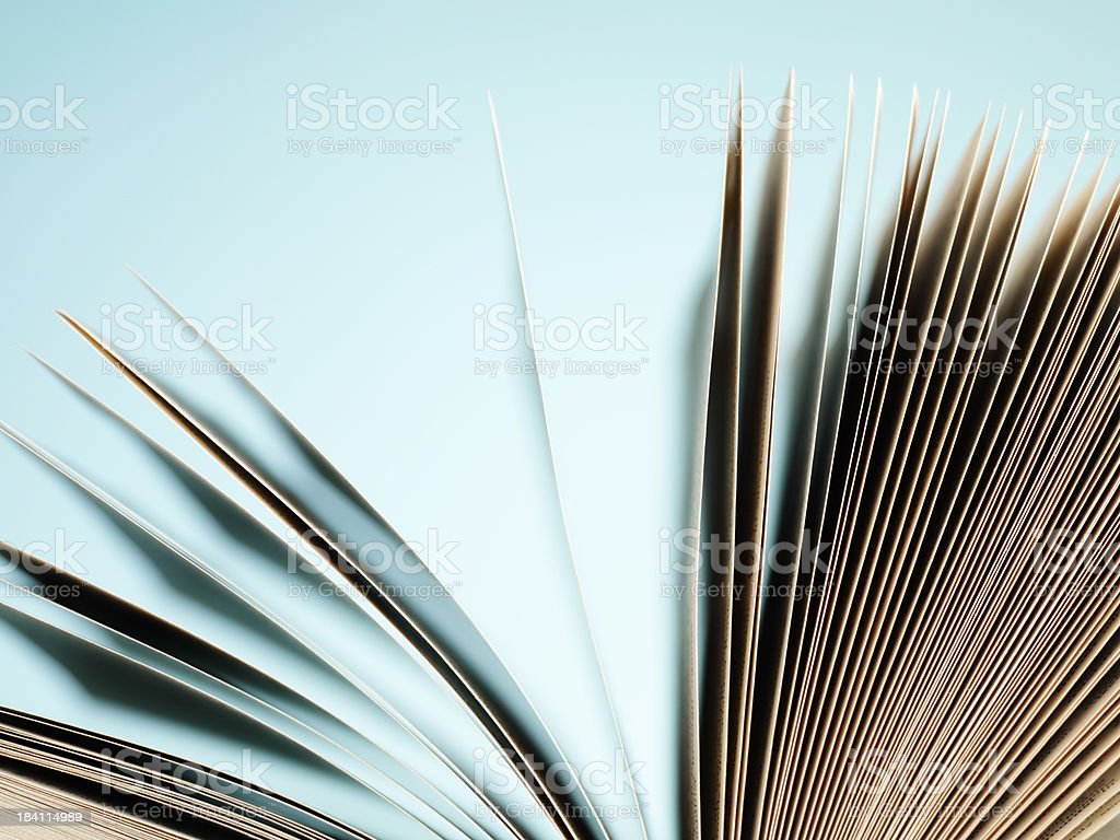 Open pages of a book on blue stock photo