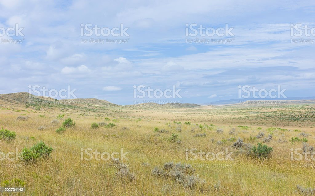 Open prarie, grassland and sagebrush near Vermillion, Nebraska, USA. stock photo