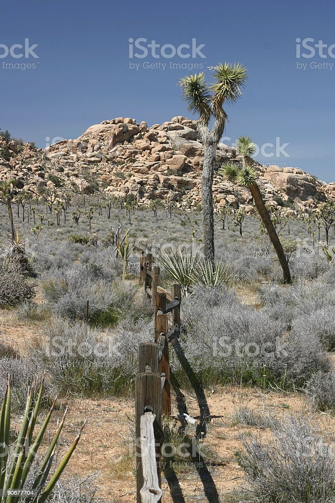 Open ranch in the desert royalty-free stock photo