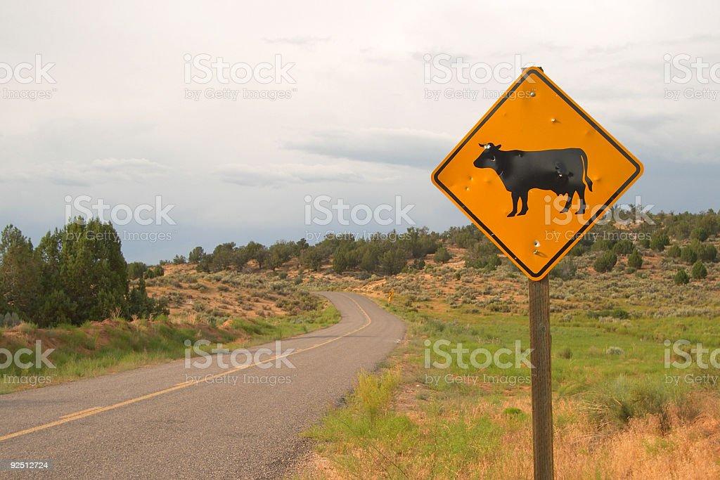 Open Range Cattle Road Sign stock photo