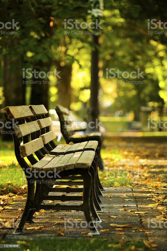 Open Seat royalty-free stock photo