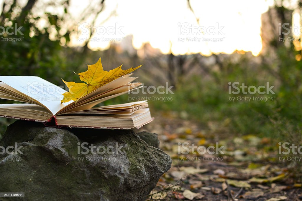 Open vintage book outdoors stock photo