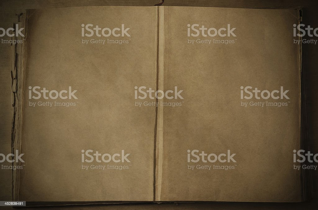 Open Vintage Book with Blank Pages stock photo