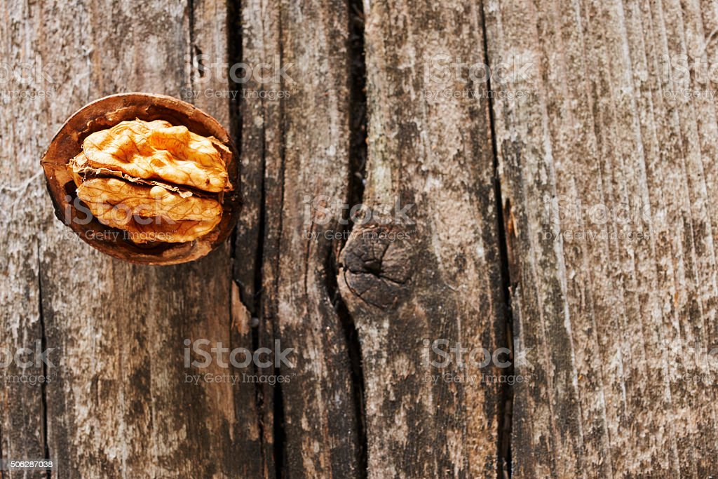 Open walnut stock photo