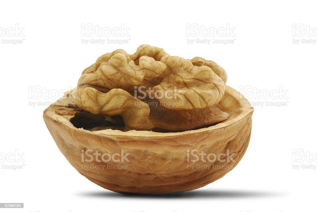 open walnut with shadow royalty-free stock photo