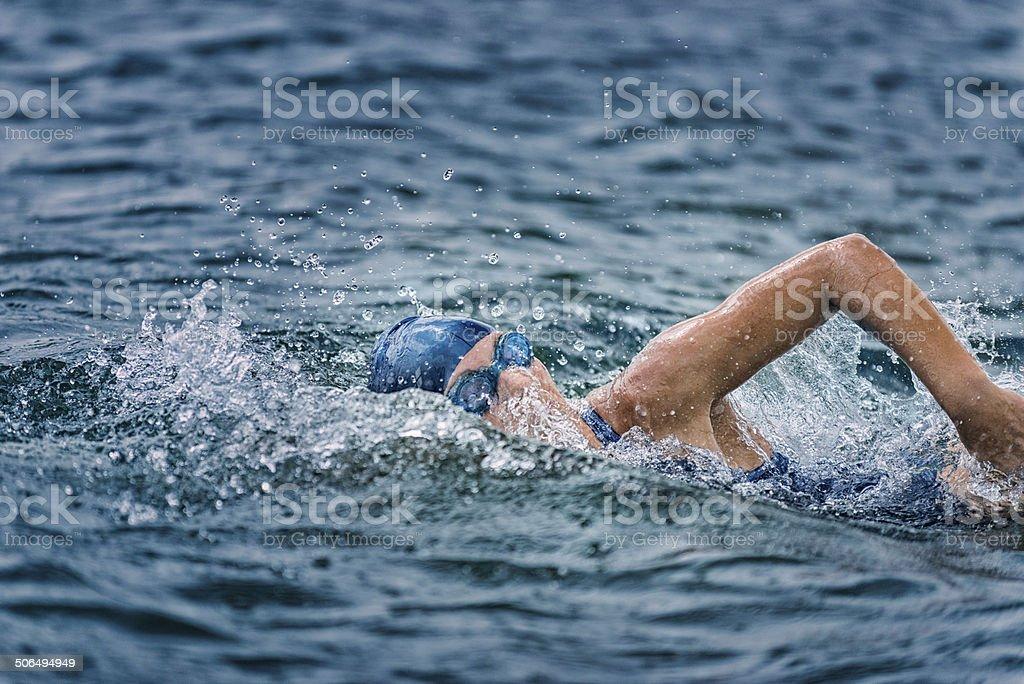 Open Water Swimming stock photo