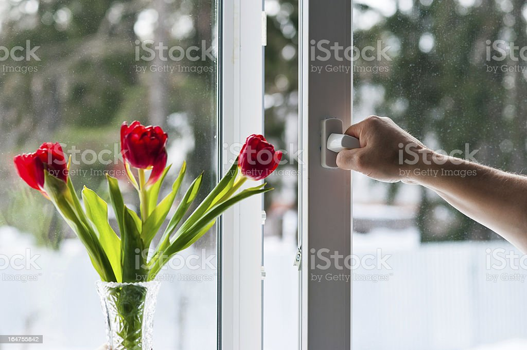 Open window with flowers in a vase royalty-free stock photo