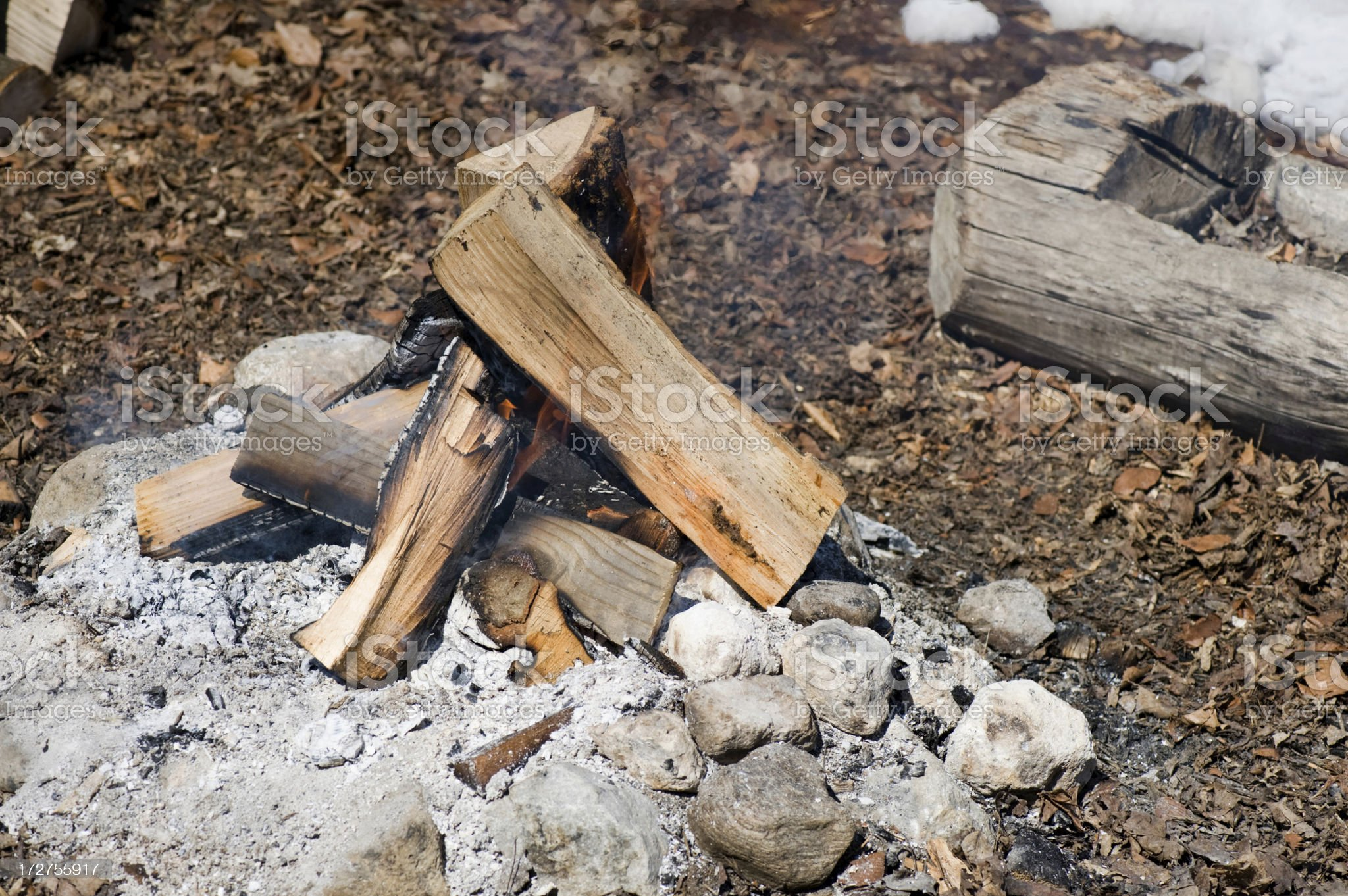 Open wood fire royalty-free stock photo