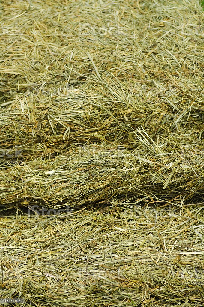 Opened Hay Bale Close-up stock photo