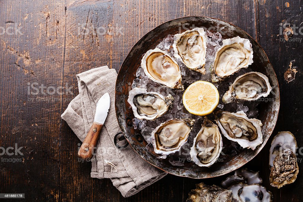 Opened Oysters stock photo