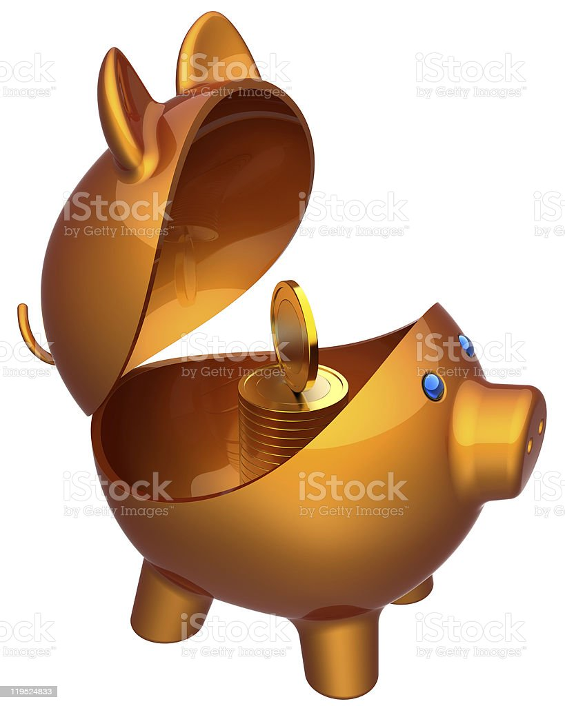 Opened piggy bank. Attention hackers attack! royalty-free stock photo