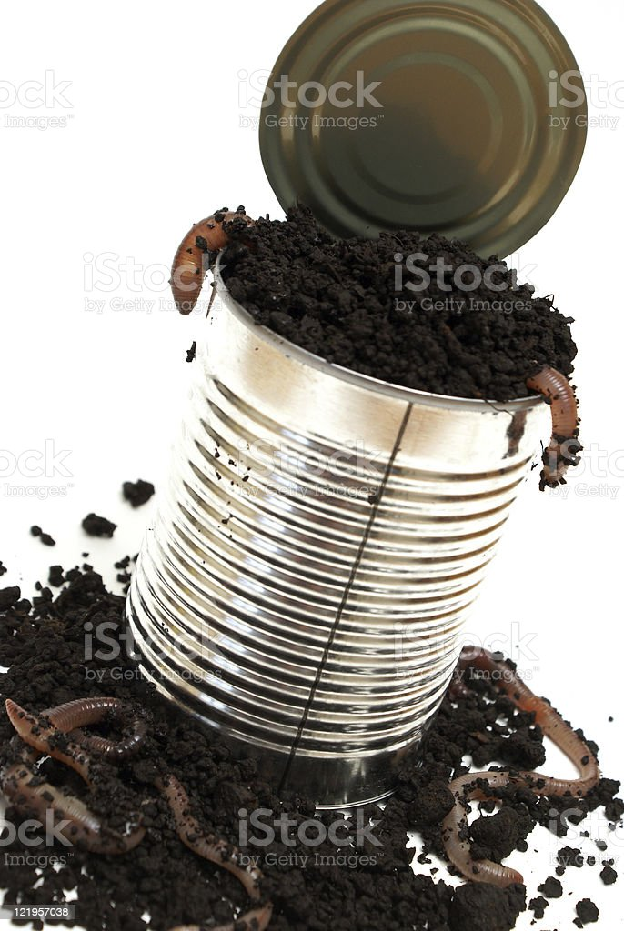 Opening a Can of Worms stock photo