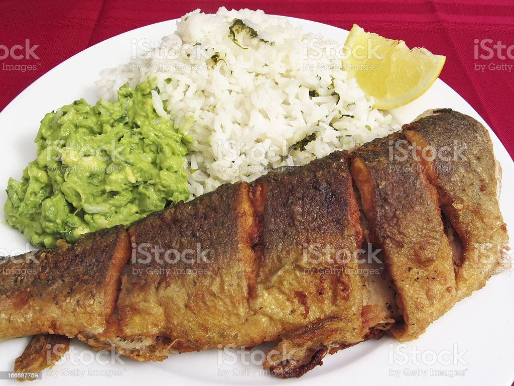 Opening Day Trout for Dinner royalty-free stock photo