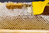 Opening Honeycombs