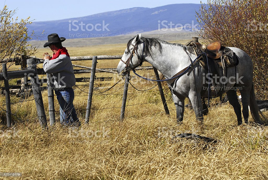Opening the Gate royalty-free stock photo
