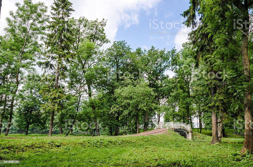 Openwork bridge in the Gatchina Palace Park stock photo