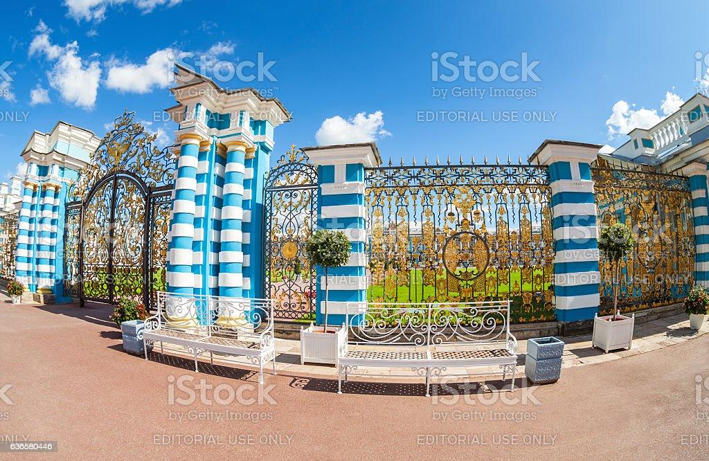 Openwork gate of Catherine Palace stock photo