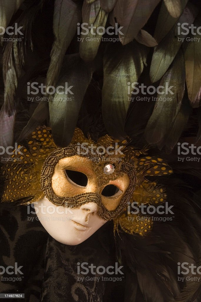Opera Masquerade Party Mask, Feathered Period Costume of Venice, Italy stock photo