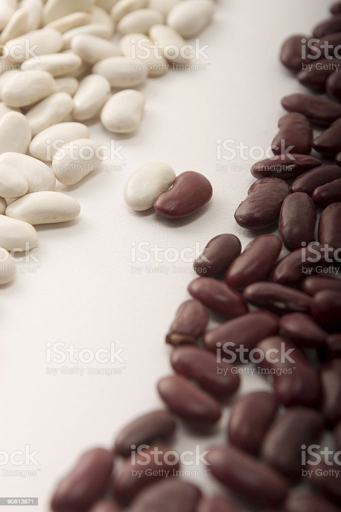 Opposition of black and white beans stock photo