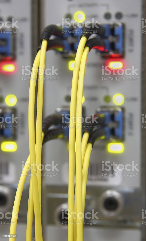 Optic cables connected to router ports stock photo