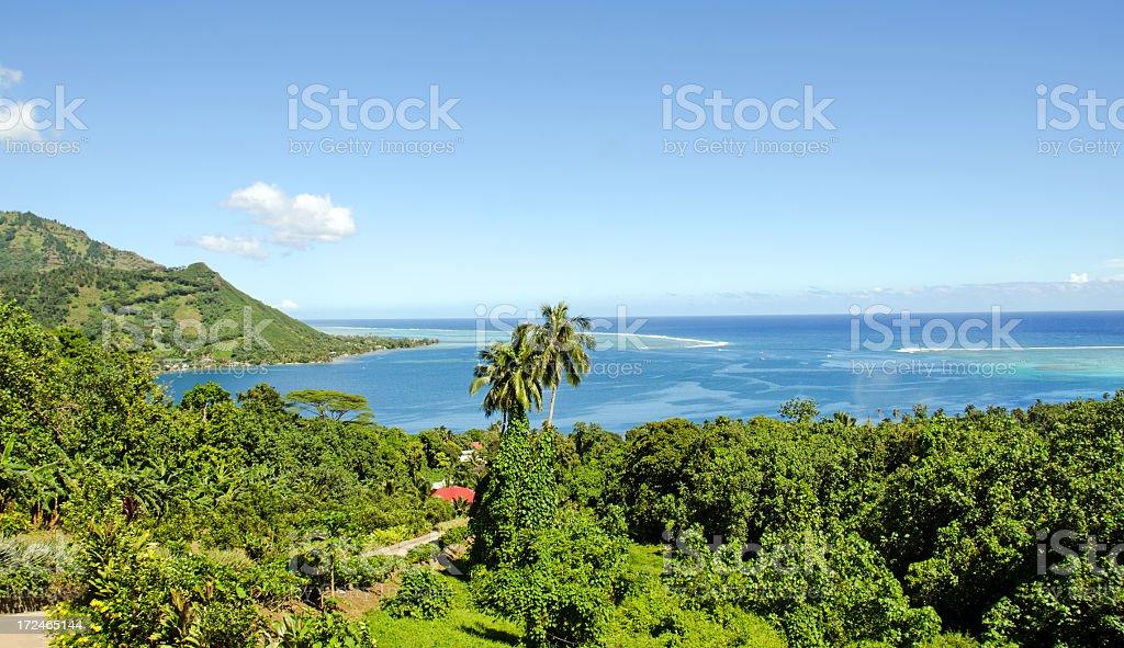Opunohua Bay on the Island of Moorea royalty-free stock photo