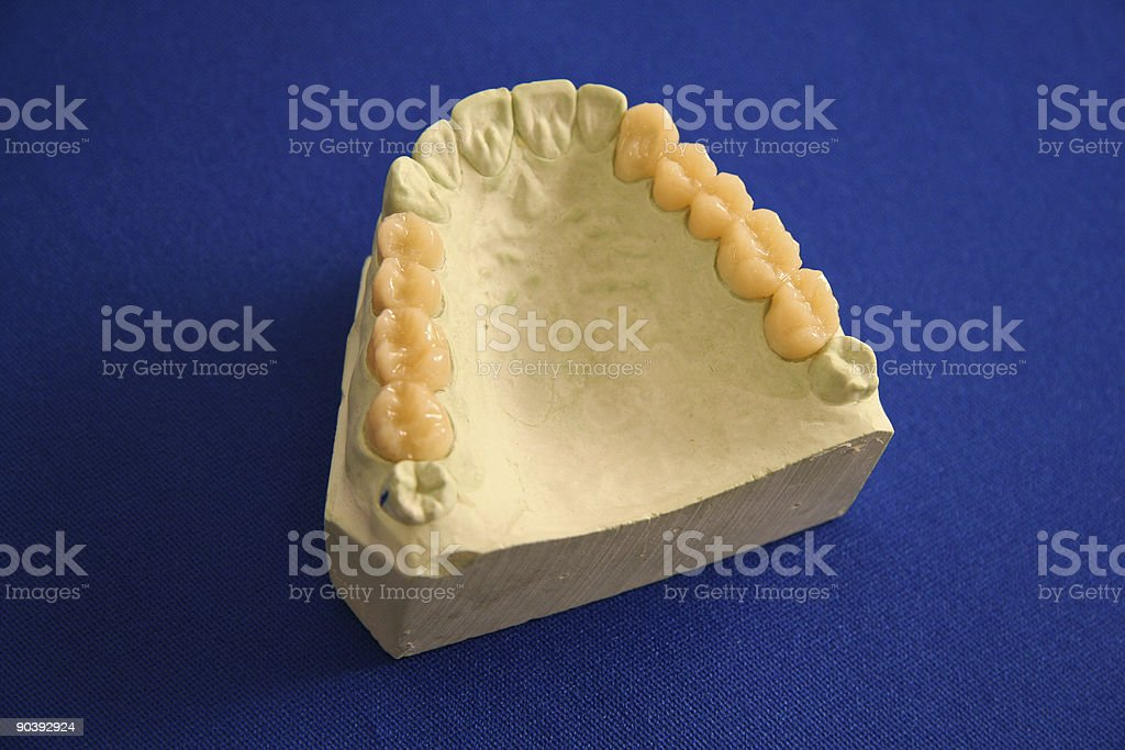 Oral Health royalty-free stock photo