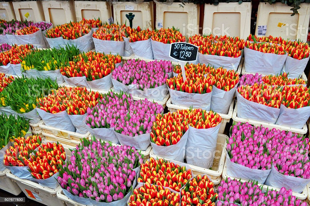 orange and pink tulips sale on the flower market stock photo