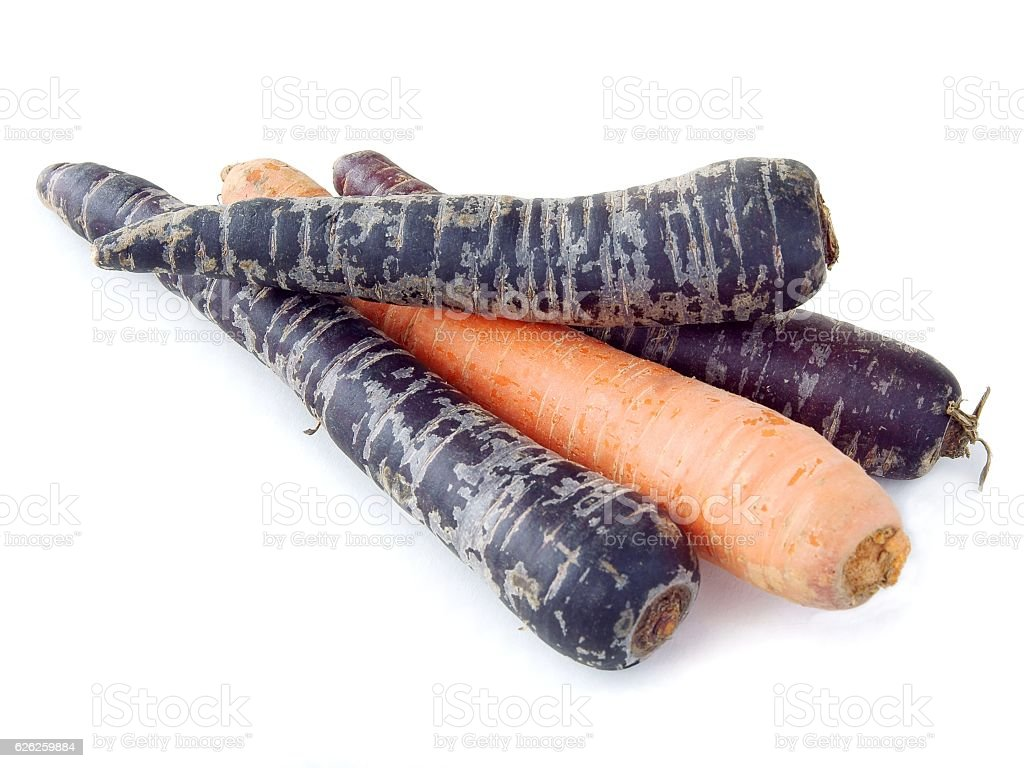 orange and purple kind of carrot root stock photo