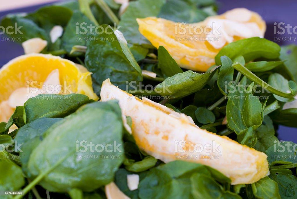 Orange and Watercress Salad stock photo