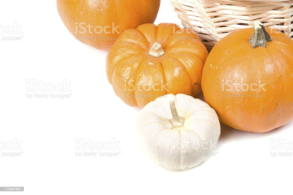 Orange and white decorative pumpkins stock photo