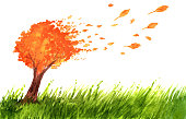 Orange autumn tree and grass in watercolor