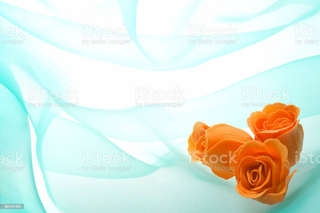 Orange buds of rose on a background green organza royalty-free stock photo