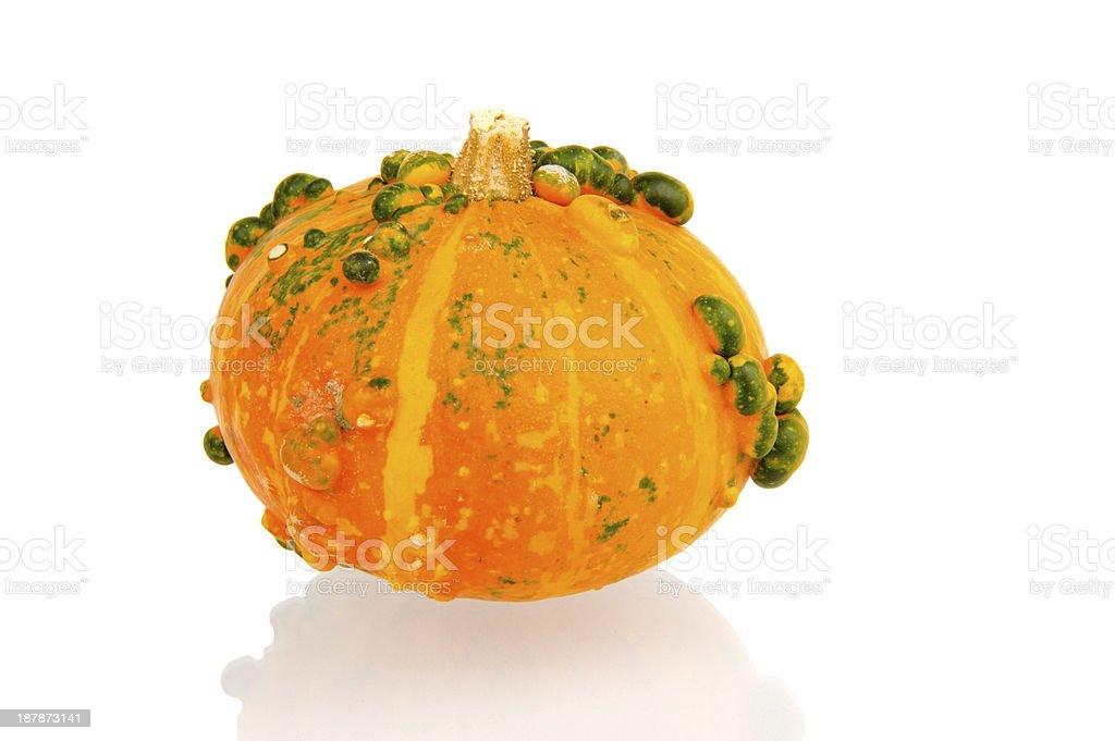Orange calabash with green bulbs stock photo