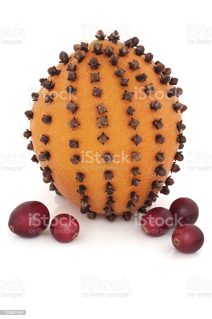 Orange, Cloves and Cranberries royalty-free stock photo