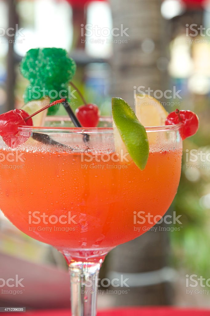 Orange Cocktail, Tropical Drink, Alcohol Beverage, Close Up royalty-free stock photo
