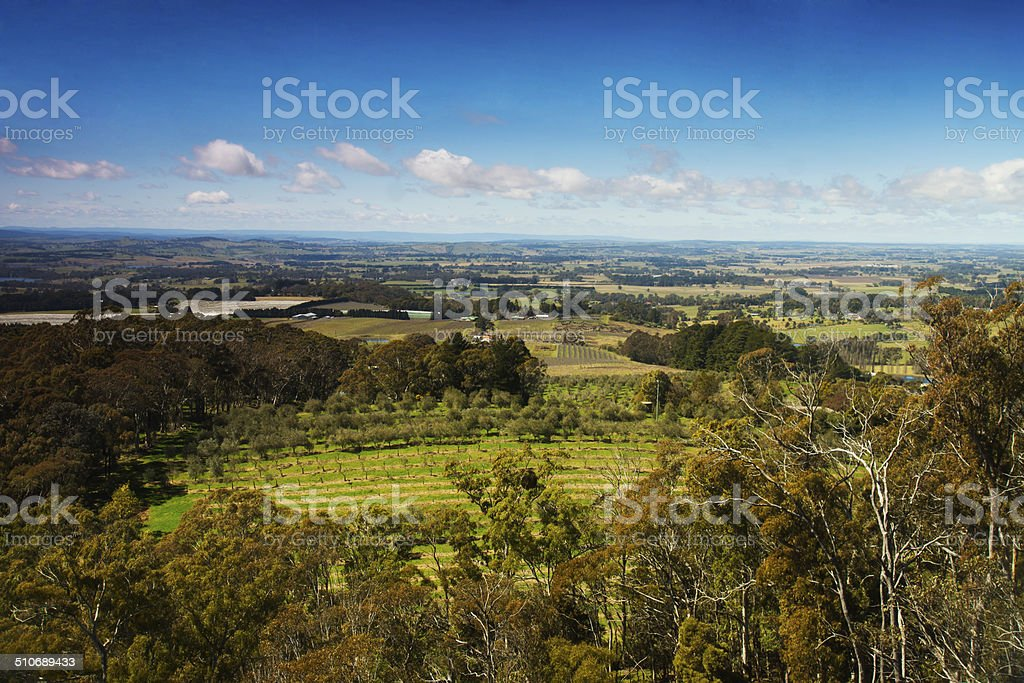 Orange Countryside stock photo