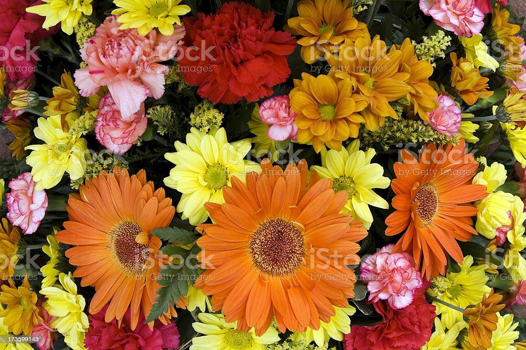 Orange daisy bouquet stock photo