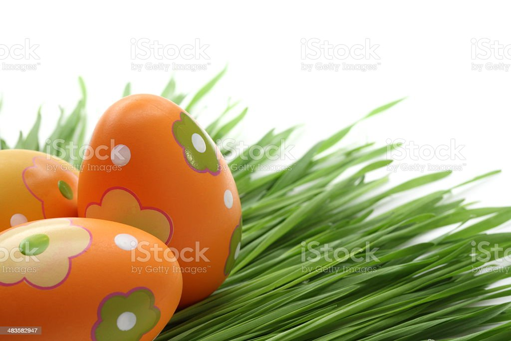 Orange Easter eggs and New Wheat royalty-free stock photo