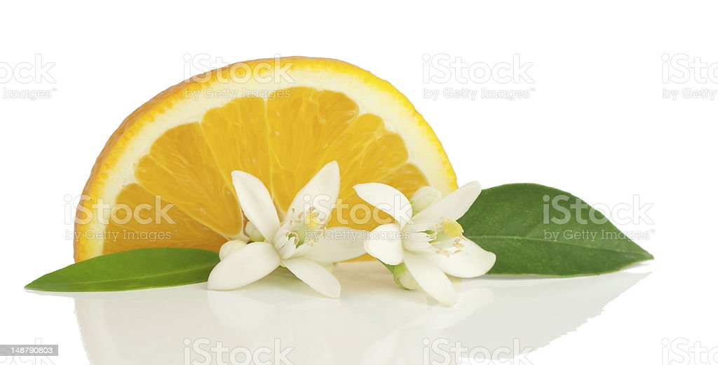 Orange, flower and slice. stock photo