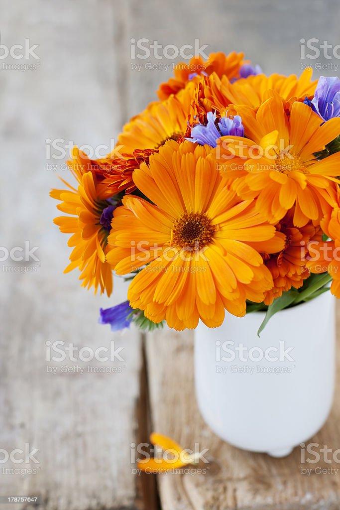 Flores de laranja foto royalty-free