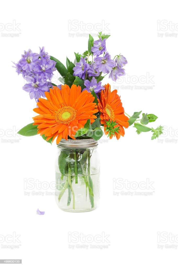 Orange Gerbera Daisies and Delphinium in Jar stock photo