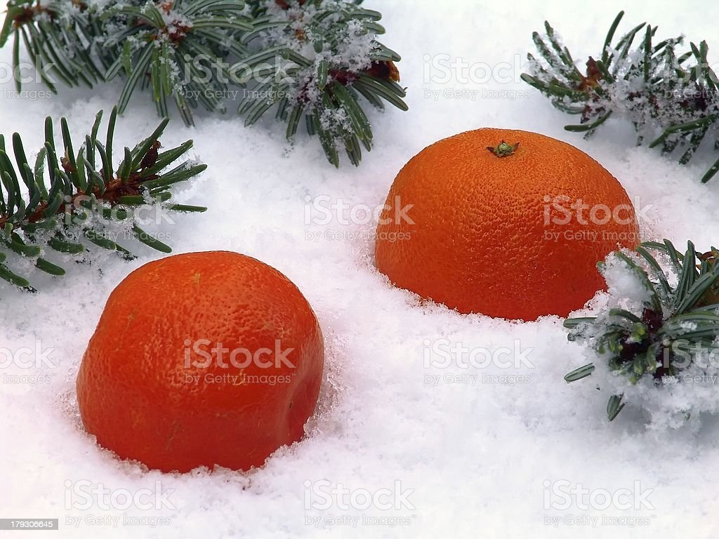 Orange in snow royalty-free stock photo
