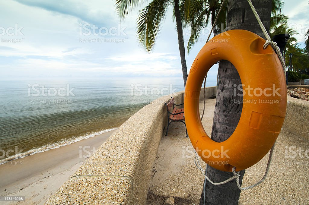 Orange Life Buoy hanging on a tree royalty-free stock photo