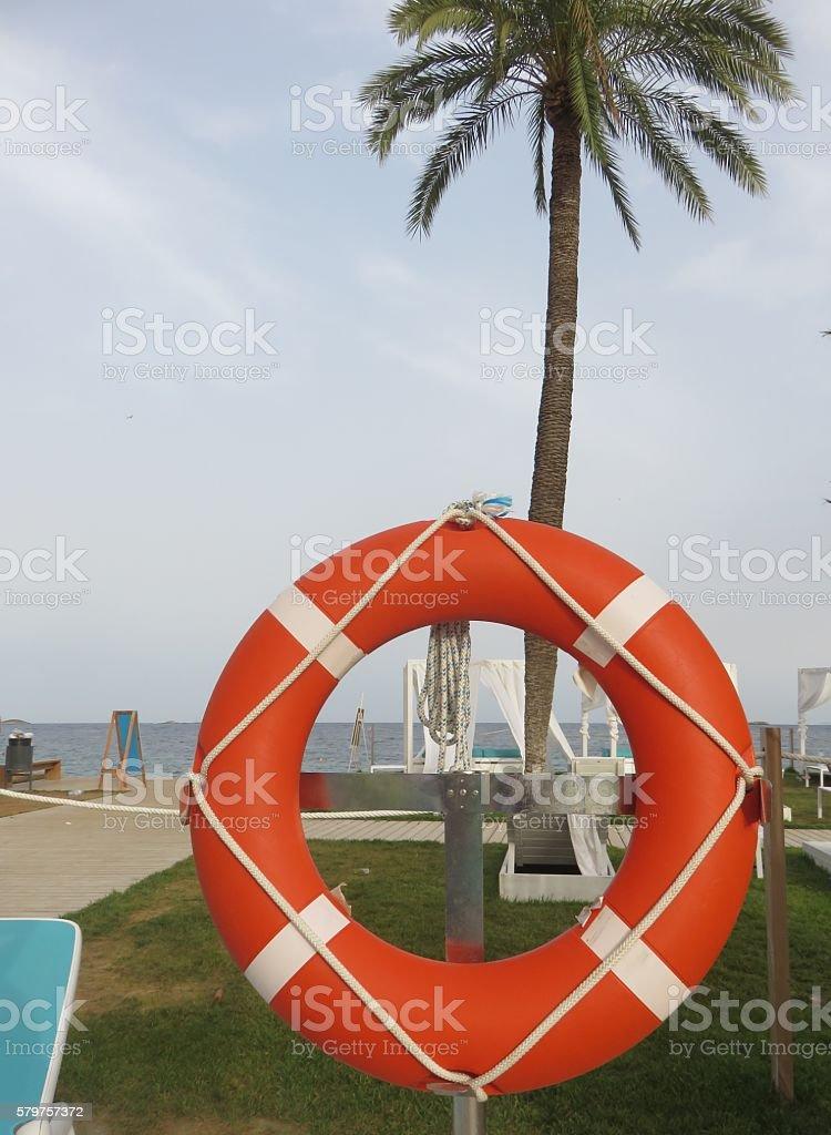 Orange Lifesaver stock photo