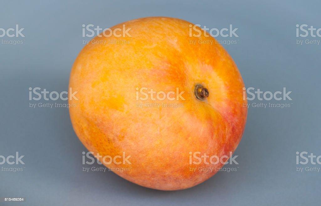Orange mango stock photo