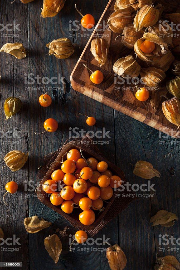 Orange Organic Cape Gooseberries stock photo