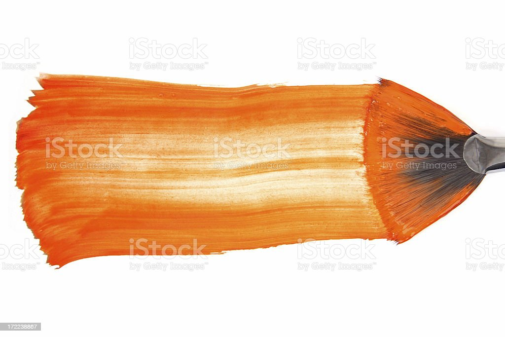 orange  paint-brush stock photo